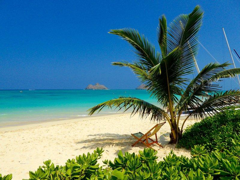 Miles de arenas cálidas, suaves y mar en calma. hermosos amaneceres y atardeceres. El lugar para disfrutar!