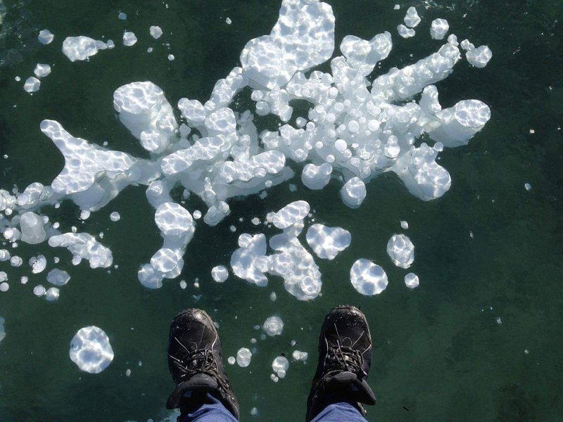 Standing on frozen Abraham Lake with famous methane bubbles - about 15 min drive from us