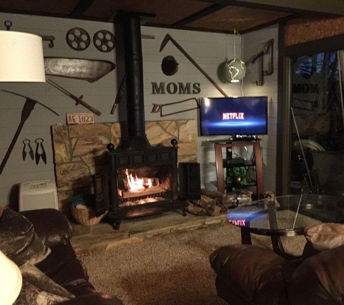 Salon nuit avec le feu confortable et un bon film