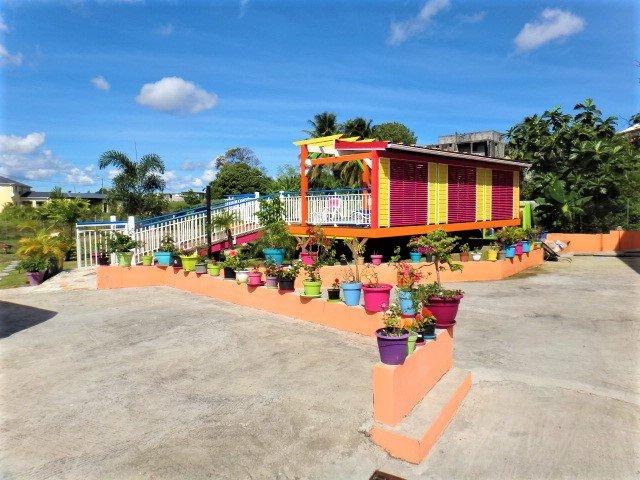 Our 'Botanic Garden' to the swimming pool