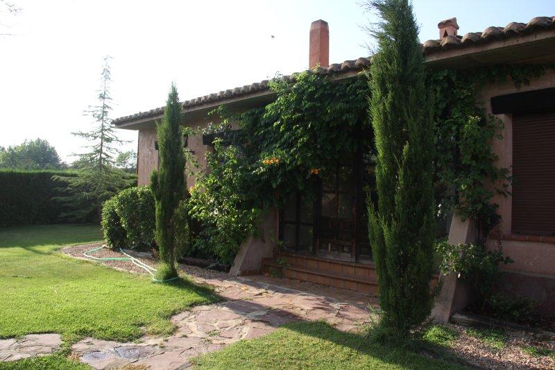 garden surrounding the house
