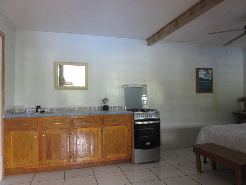 instalaciones de cocina con estufa / horno