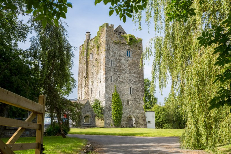 Seven Houses Cross Roads Chateau Sleeps 10 - 5217589, holiday rental in Clarinbridge