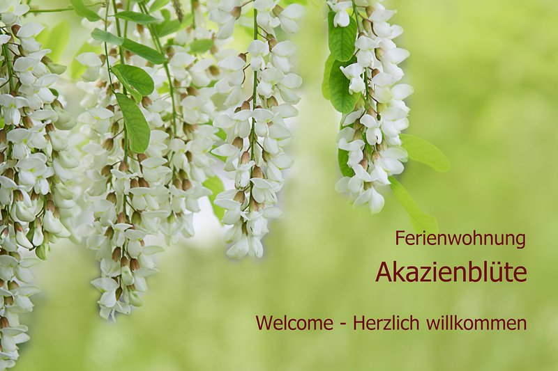 Ferienwohnung 'Akazienblüte', Ihr Domizil nahe dem Weltkulturerbe Bamberg, location de vacances à Franconia