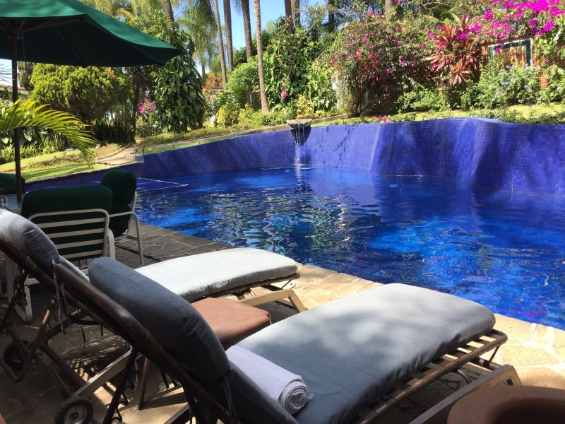 Pool surrounded by palm trees and mature / Pool surrounded by palm trees and lush vegetation gardens.