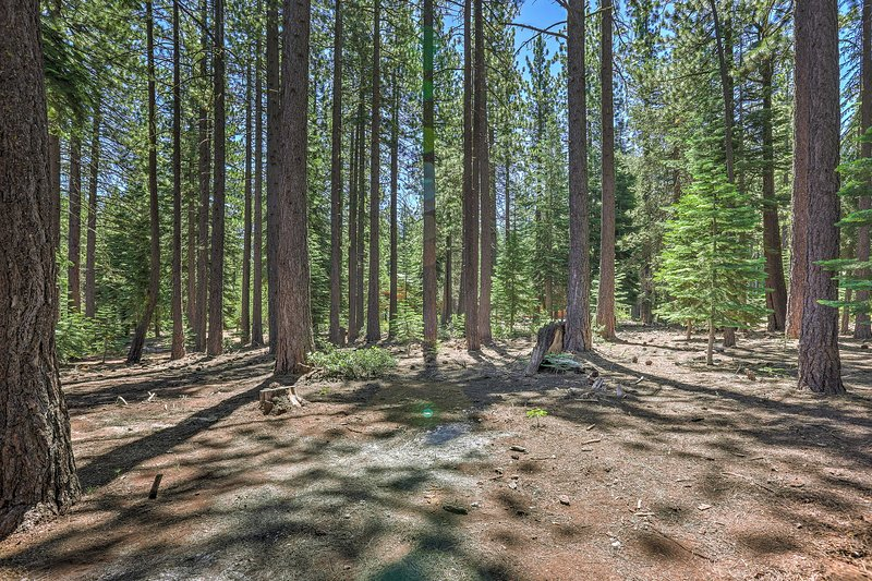 Located near Tahoe Donner Resort Area, you'll enjoy endless outdoor adventure!