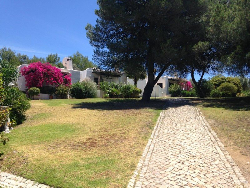 Garden view of Casa Kefina to the left of the tree