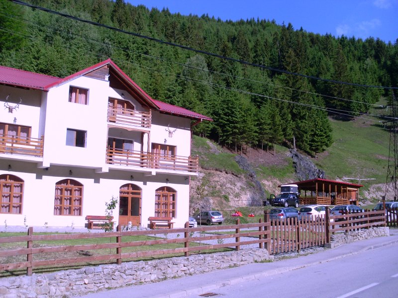 Pensiune camping Laura Borsa, holiday rental in Maramures County