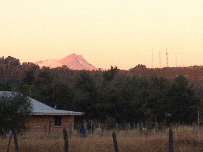 Tolguaca Volcano view from the plot. (Summer)