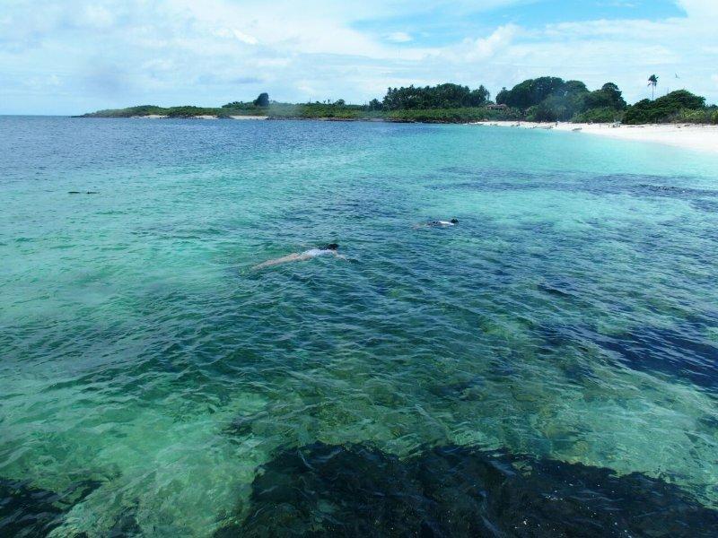Snorkel también está disponible en la Isla Iguana.