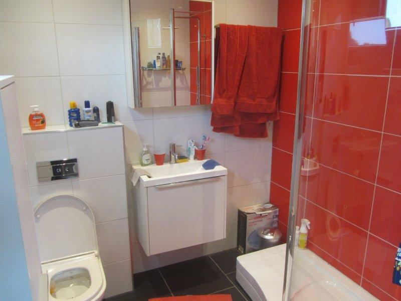 Bathroom ensuite with walk-in rain shower