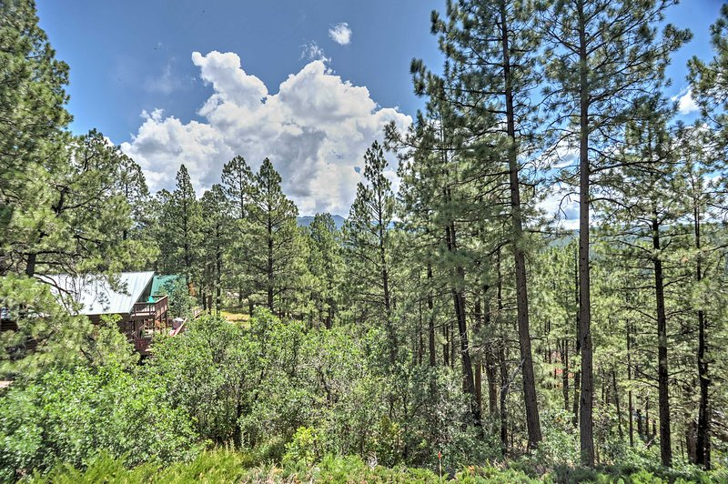 Pagosa Springs Home W Mtn Views Near Wolf Creek Updated