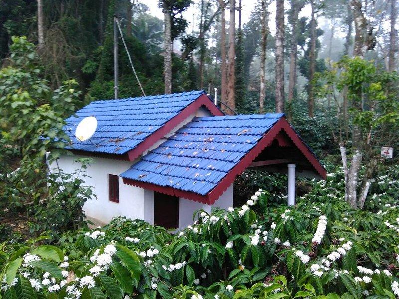 TripThrill Jammabane Cottage (1) - 1BHK, aluguéis de temporada em Suntikoppa