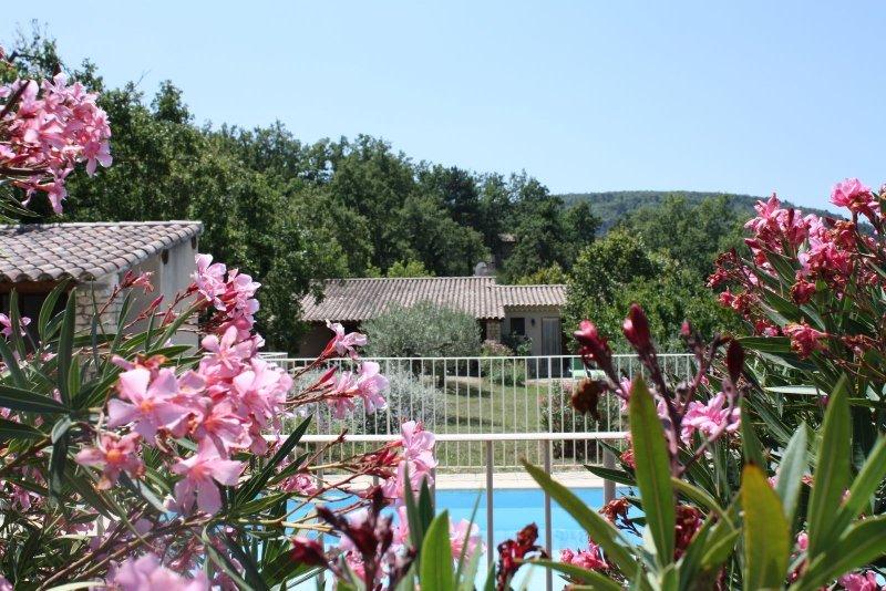 Gîte en Luberon dans parc arboré avec piscine chauffée, holiday rental in Buoux