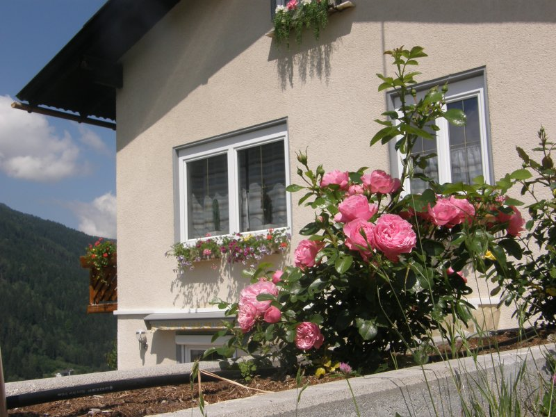 Appartement Brennseeblick, holiday rental in Afritz