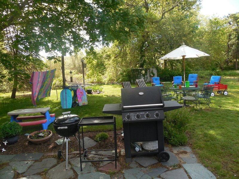 Backyard BBQ time.