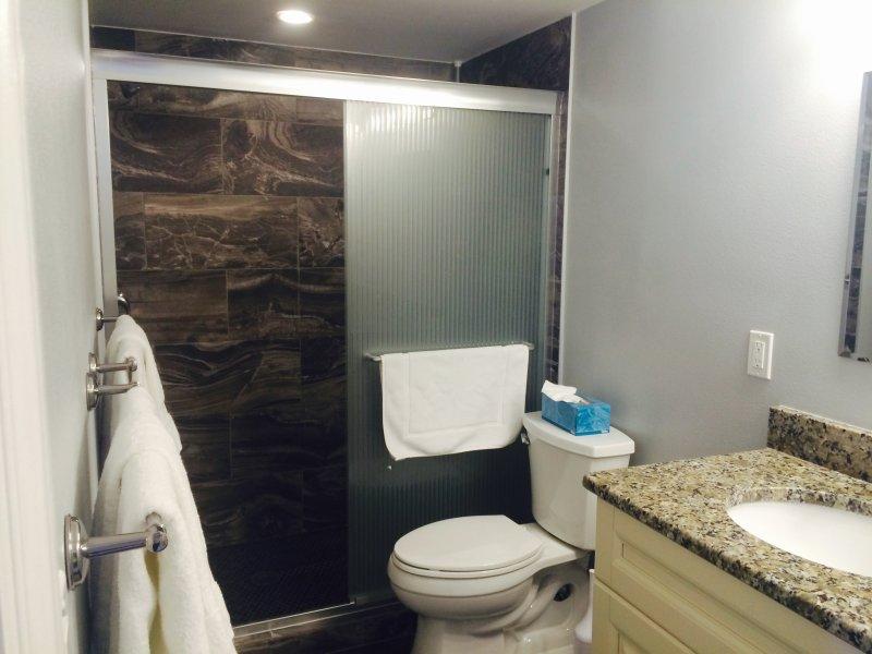 standup shower in Master Bath