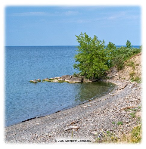 parc d'état au bord du lac à proximité