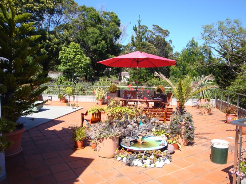 Apartamento Studio Vista Jardim, Água de Pena, Machico, holiday rental in Canical