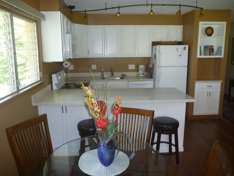 Totally new dream kitchen! New cabinetry, silestone countertops & appliances.