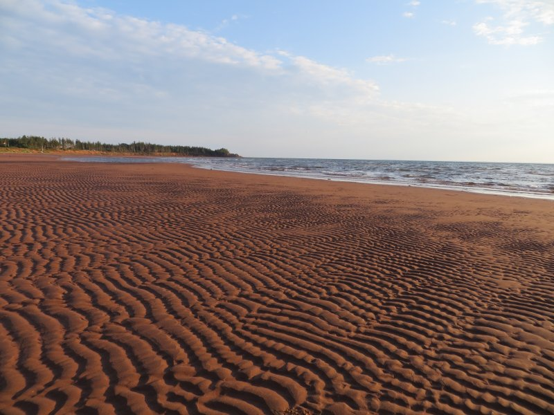 La mejor playa de PEI (aunque tal vez estamos un poco sesgada) está a 100 metros de distancia!