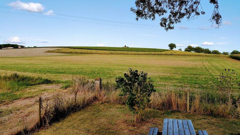 landscape around the property
