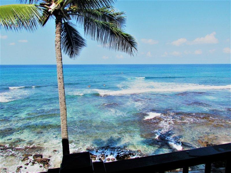 Stunning views of Banyan's Surf Break! Watch tropical fish and turtles swimming around the reef!