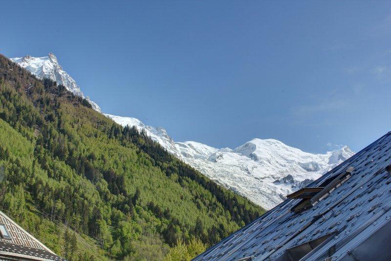 Vista dal balcone - catena del Monte Bianco.