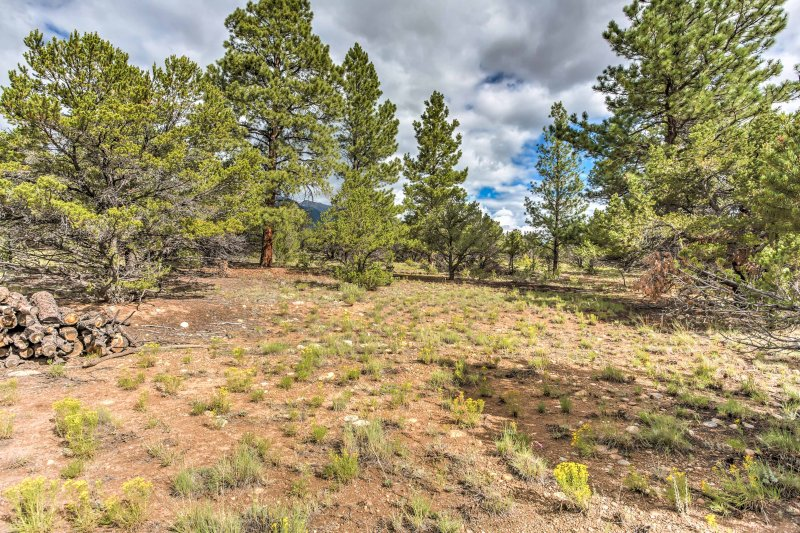 Never miss an opportunity for adventure when staying at this Buena Vista home!