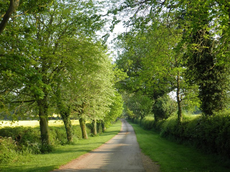 The private driveway up to the Coach House from the small rural country lane to Braunston village