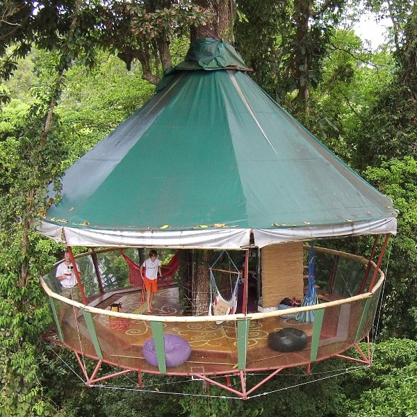 The Amazing Treehouse and Nature Observatorio Manzanillo, vacation rental in Province of Limon