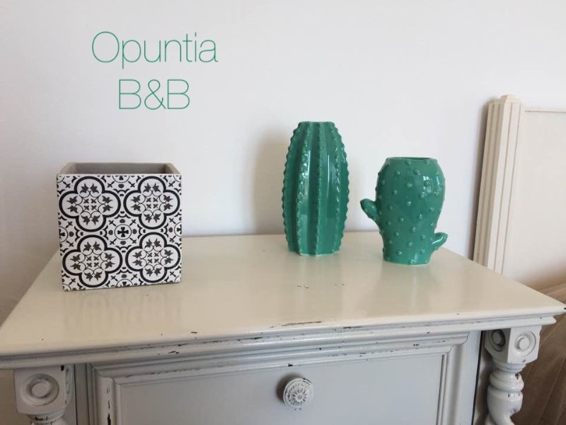 B&B Opuntia food & relax, holiday rental in San Massimo