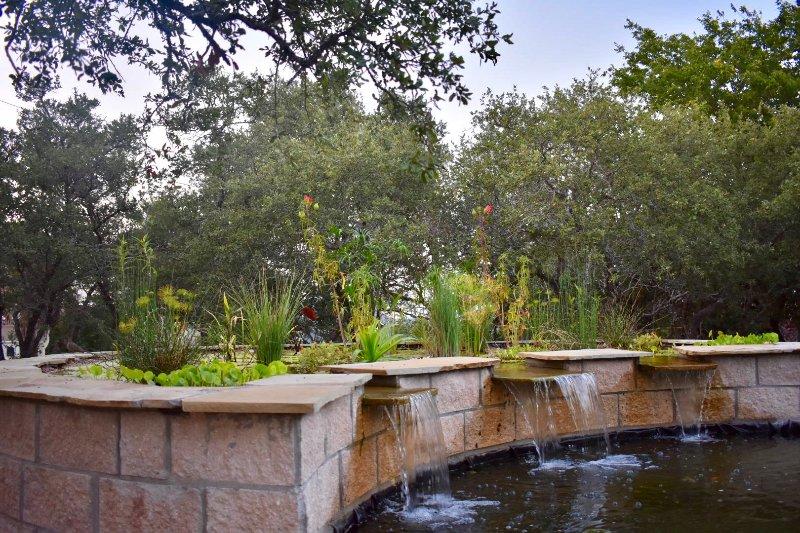A lagoa pântano nos jardins nativos.