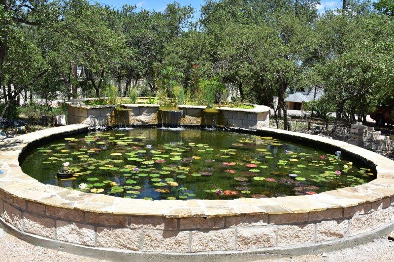 A lagoa nos jardins nativos.