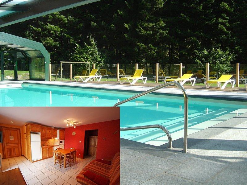 GITE ROCHE DES DUCS n°5, location de vacances à Rochesson