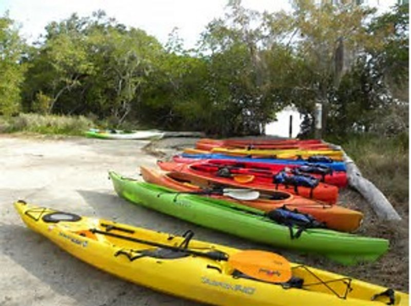 The Kayak beach has kayaks for rent to travel through the amazing mangrove tunnels on the Bay side.