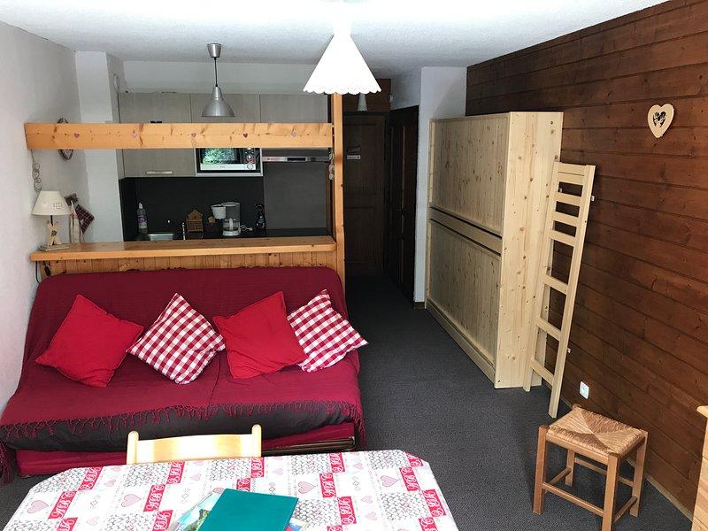 STUDIO MONTAGNE A CHATEL, DOMAINE PORTES DU SOLEIL, vacation rental in Chatel
