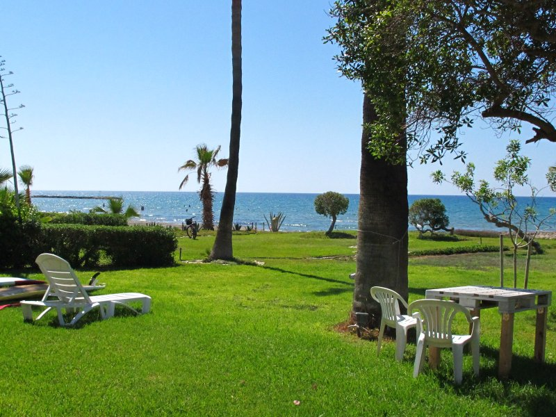 This is the garden at the front of Sandy Beach Villas through which we walk to the beach and sea.