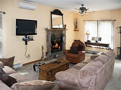 Vista 2 - salón con TV y chimenea viviente.