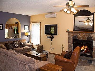 salón con TV y chimenea -view 1 viviente.