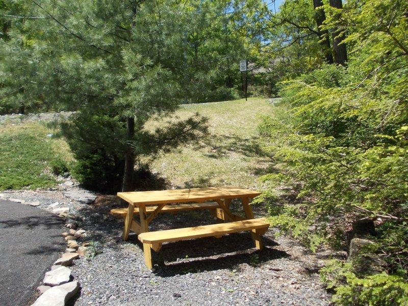 mesa de picnic fuera.