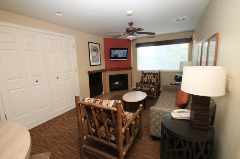 View of living room, Tv, fire place, and Murphy bed in cabinet.