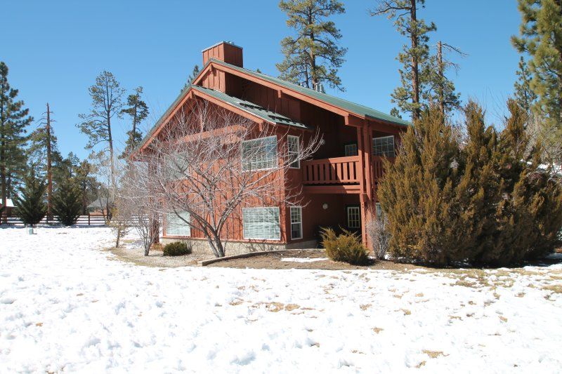 View of building with tree and snow.