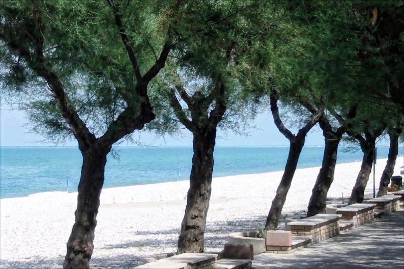 Onze lokale stranden - druk in juli en augustus ... veel rustiger in mei, juni en september