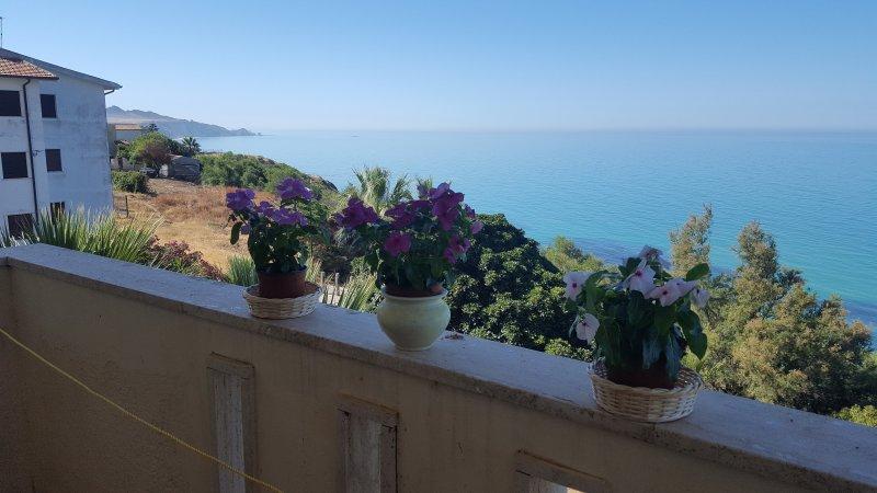 Balcony / Panorama