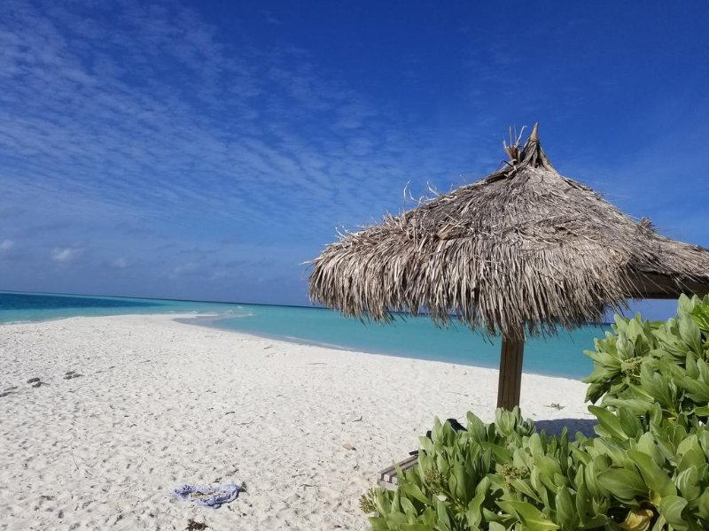 Rasdhoo lilac stay, holiday rental in Maldives