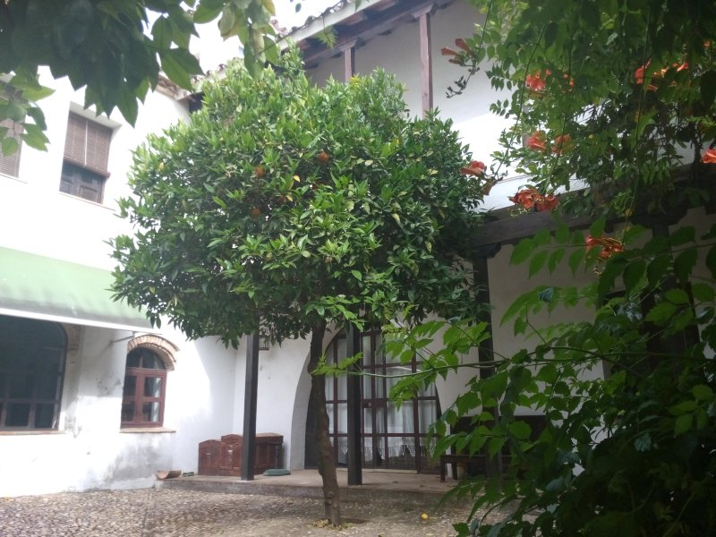 EL PATIO DEL LIMONERO.( Junto a Palacio de Viana), holiday rental in Meriga