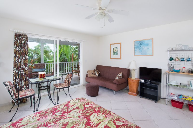 Hibiscus Room with sliders to large lanai