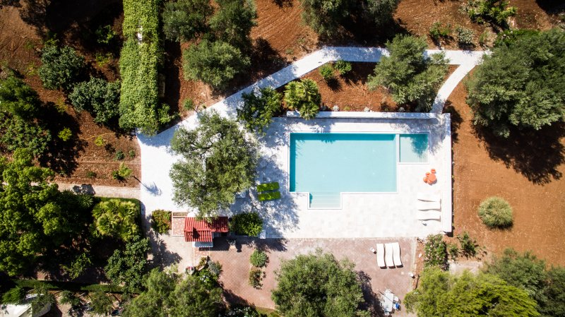 Bird's view of the pool and toddler pool