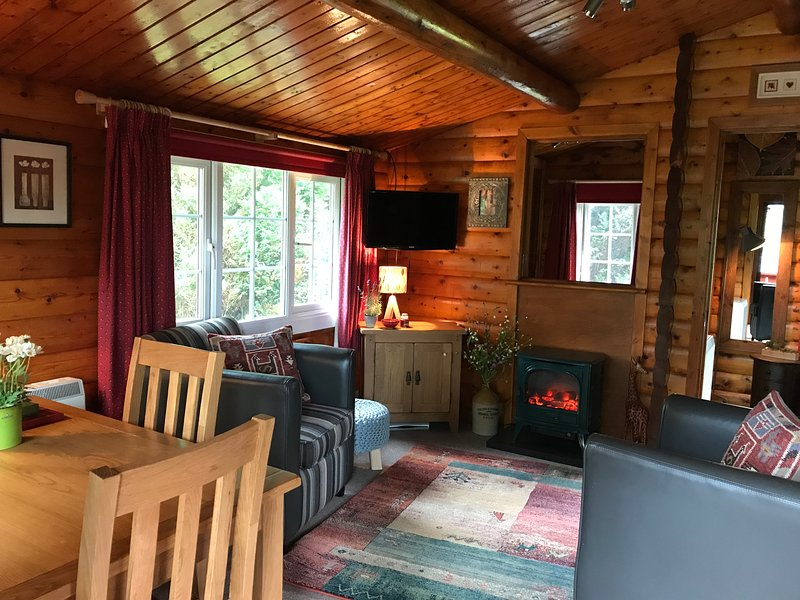 The cosiest of log cabins for two people only !!! in stunning Snowdonia, holiday rental in Bronaber
